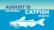 Information regarding August Catfish month is as follows Start date is August 01 2017 and End Date is August 31 2017 and Name of Ad/Event is August Catfish month and File is Browse and File Name is August-Catfish.PNG_comp.jpg and Panel is Main and Affiliation is recognized student organization and Name is Sophie White and Email is swhite@apogee.us and